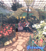 Flower Show - Gangtok.